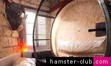 French Hotel Lets Guests Live Like Hamsters