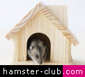 hamster wooden homes