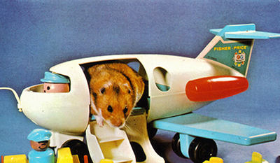 Traveling by Plane with your Hamster
